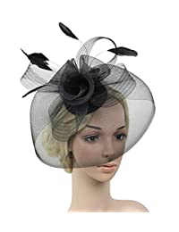 Urban CoCo Women's Flower Feather and Veil Fascinator Cocktail Party Hair Clip Hat