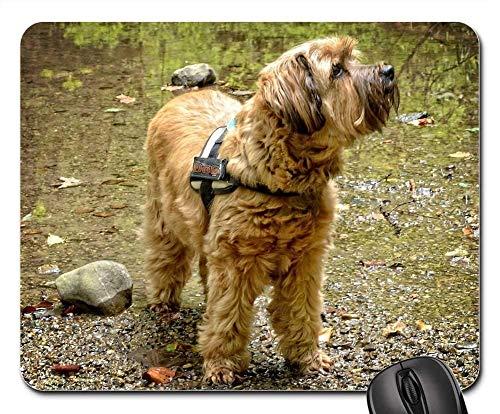 Gaming Mouse Pads,Mouse mat,Tibetan Terrier Dog Nature Looks Pet