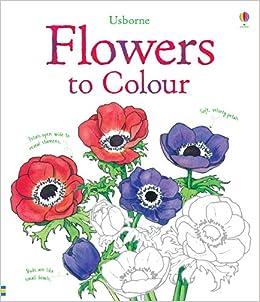 flowers to colour usborne colouring books amazoncouk sue meredith 9781409523178 books - Colouring Books