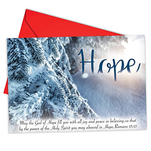 12 'Holiday Devotions Hope' Boxed Christmas Cards w/ Envelopes 4.63 x 6.75 inch, Set of Snowy Landscapes and Scripture Verses Cards, Winter Scenes and Inspiring Bible Quotes Holiday Notes B6661BXSG