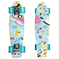 Ferty Mini Retro Style Cruiser Complete Skateboard Skateboards Skate Board for Boys and Girls (Cat and fish)