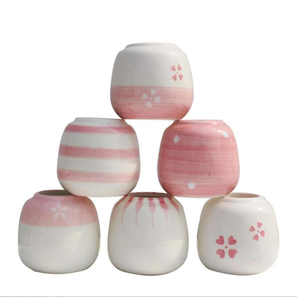MKIUYTRESDFGB Vaso di Fiori Carnoso rosa Dipinto A Mano, Pentola per Pollice, all'Interno E all'Esterno Stile Temperamento Bambina con 6 Confezioni