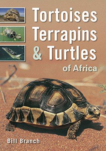 Popular Tortoises Book (Tortoises, Terrapins & Turtles of Africa)