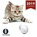 YOFUN Smart Interactive Cat Toy - Newest Version 360 Degree Self Rotating Ball, USB Rechargeable Wicked Ball, Build-in Spinning Led Light, Stiulate Hunting Instinct for Your Kitty (White) m