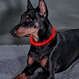 Bseen LED Dog Collar – Cuttable Water Resistant Glowing Dog Collar Light up, Battery Powered Pet Necklace Loop for Small, Medium, Large Dogs (Ruby Red)