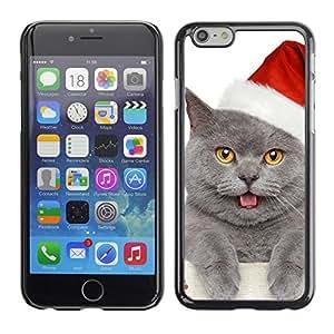 PC/Aluminum Funda Carcasa protectora para Apple Iphone 6 Plus 5.5 British Shorthair Russian Blue Cat Christmas / JUSTGO PHONE PROTECTOR