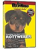 ROTTWEILER DVD! Everything You Should Know + Dog & Puppy Training Bonus