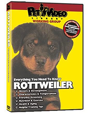Amazoncom Rottweiler Dvd Everything You Should Know Dog Puppy