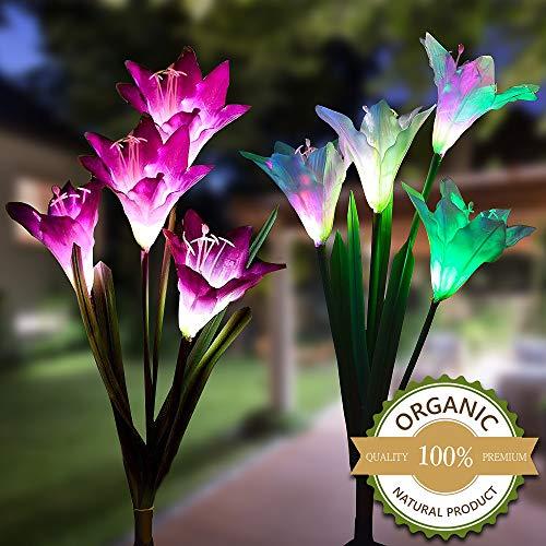 External Garden Spot Lights in US - 3