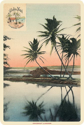 Hawaiian Vintage Postcards Pack of 30 - Aloha Nui Postcard by Pacifica Island Art