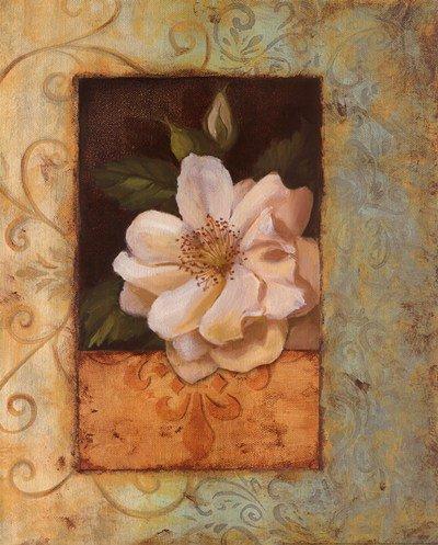 Antique Rose II - Special by Jillian Jeffrey - 16x20 Inches - Art Print Poster (Jillian Jeffrey Antique)