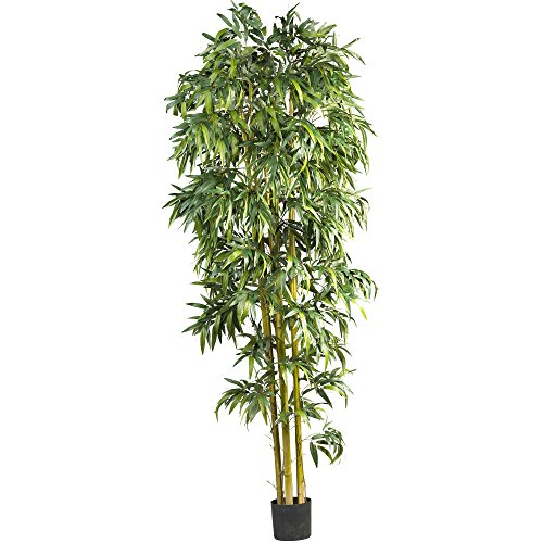 Nearly Natural 5192 Biggy Style Bamboo Tree, 8-Feet by Nearly Natural