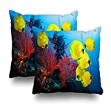 Soopat Decorativepillows Covers 18''x18'' set of 2, Two Sides Printed Underwater Coral Reef And School Masked Butterfly Fish Throw Pillow Cases Home Decor Nice Gift Kitchen Garden Sofa Bedroom