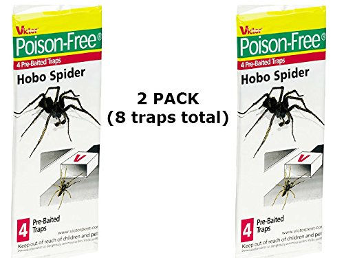 Hobo Spider Trap Hide Hobo