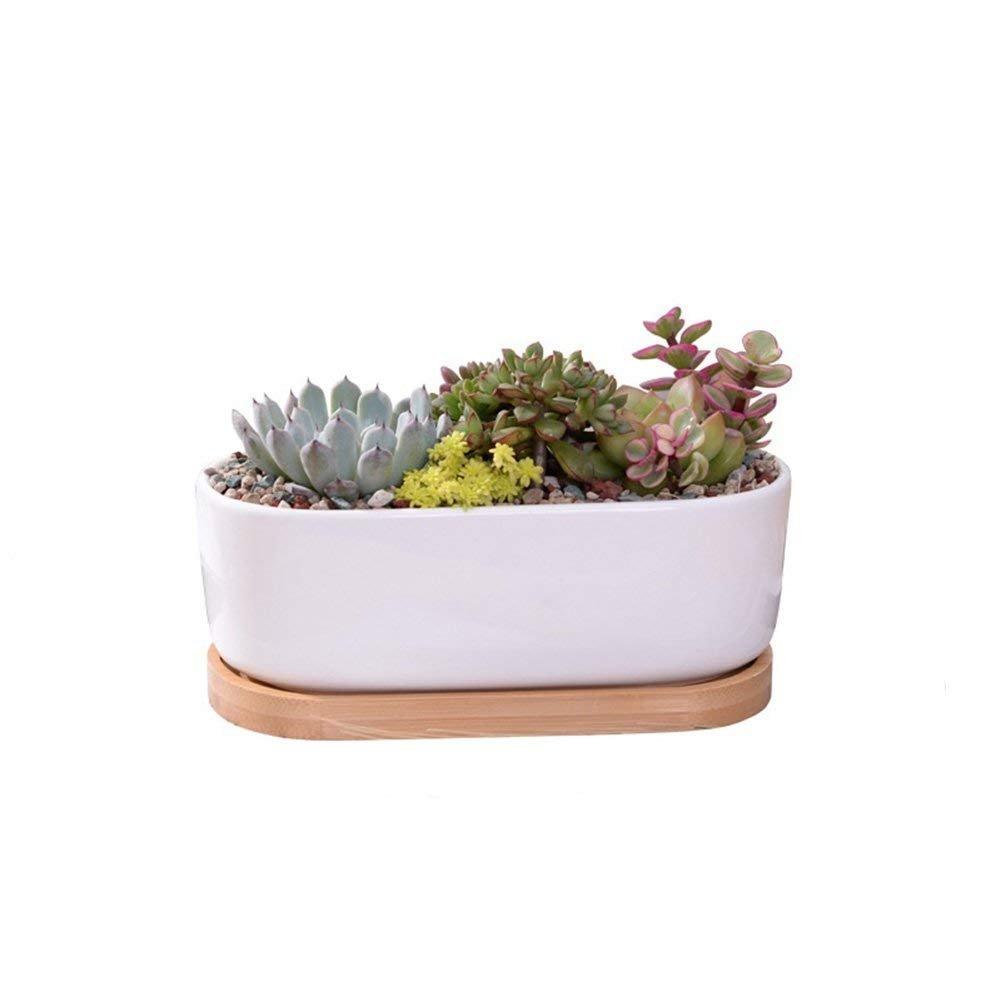 Youfui Ceramic Animal Flowerpot Succulent Plants Container Desk Mini Ornaments (Succulent Plant Pot)