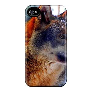 DaMMeke Iphone 4/4s Well-designed Hard Case Cover Winter Gaze Protector