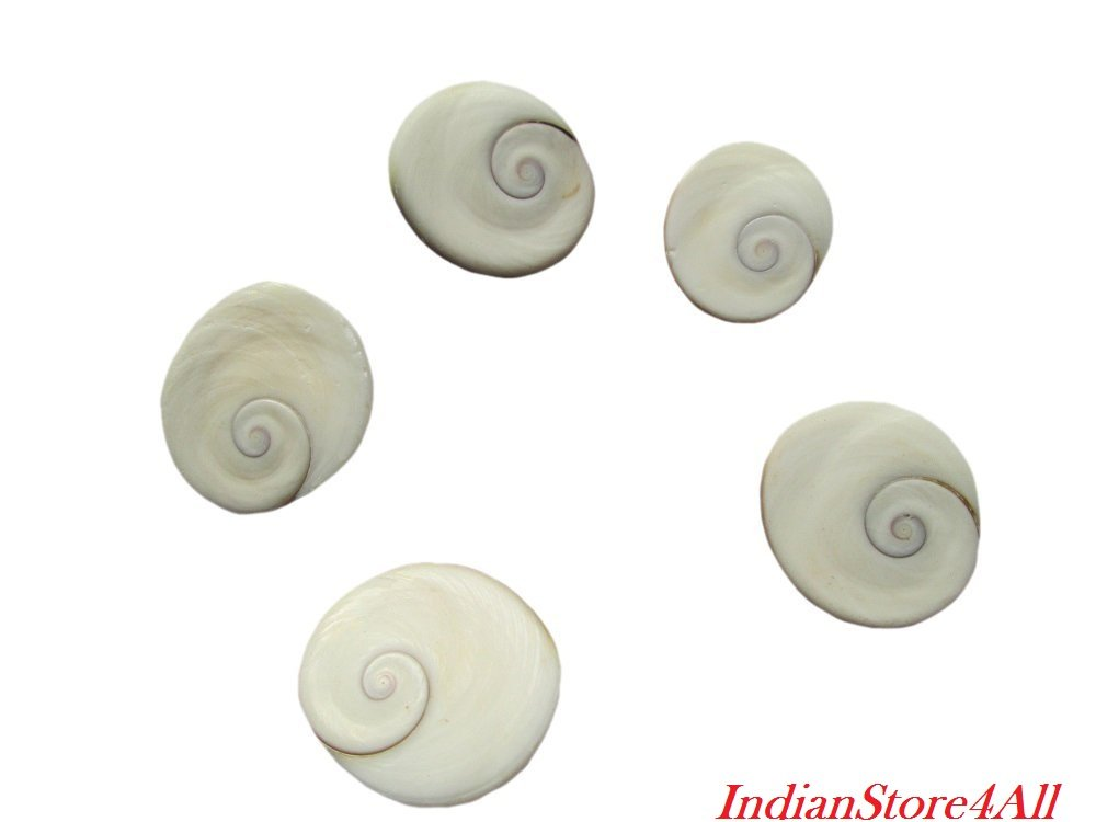 IndianStore4All Gomati Chakra For Peace And