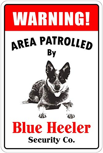 Lilyanaen New Tin Sign Warning Area Patrolled by Blue Heeler Novelty Dog Sign for Outdoor & Indoor 8
