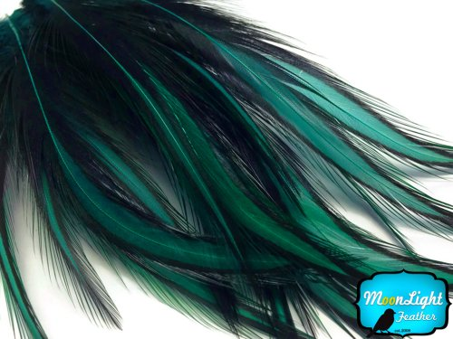 Rooster Feathers, Peacock Green Laced Long Rooster Cape Feathers - 10 Pieces (Feather Peacock Large)