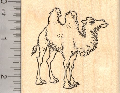 Bactrian Camel Rubber Stamp, Two Humps