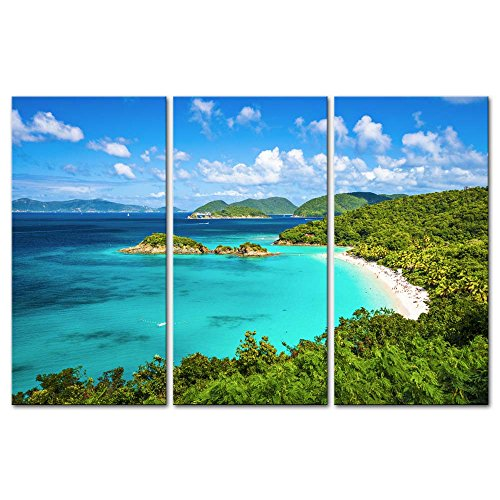 (Wall Art Decor Poster Painting On Canvas Print Pictures 3 Pieces Trunk Bay St John Virgin Islands United States Seascape Beach Framed Picture for Home Decoration Living Room Artwork)