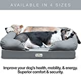 Best Pet Dog Beds - PetFusion Ultimate Dog Bed & Lounge. Review
