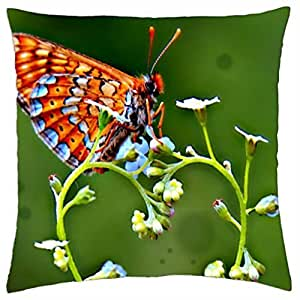 SWIRLS OF A BUTTERFLY - Throw Pillow Cover Case (18