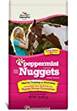 Manna Pro Peppermint Trail Size Bite Size Nuggets, 1 lb