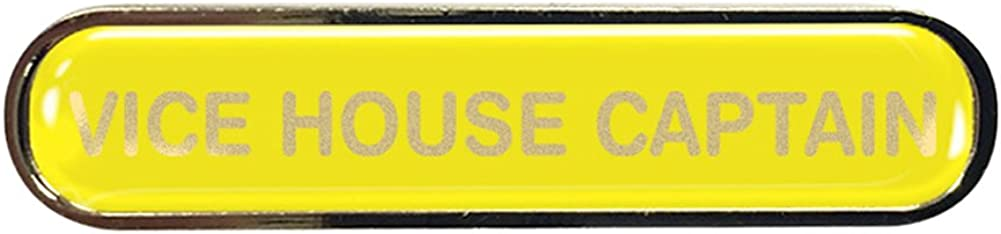 Vice House Captain Gel Domed School Bar Badge