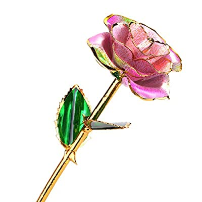 24k Gold Rose Flower with Long Stem Rose Dipped in Gold Gift for Women Girls on Birthday, Valentine's Day, Mother's Day, Christmas