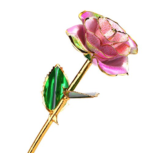 Pink Rose Gold Trim (24k Gold Rose Flower with Long Stem Rose Dipped in Gold Gift for Women Girls on Birthday, Valentine's Day, Mother's Day, Christmas (Pink+Green))