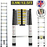 Autofather 3.8M Telescopic Ladder Multi-Purpose Aluminium Foldable Extension Extendable Steps Light Weight Easy to Carry Sturdy Safe to Climb