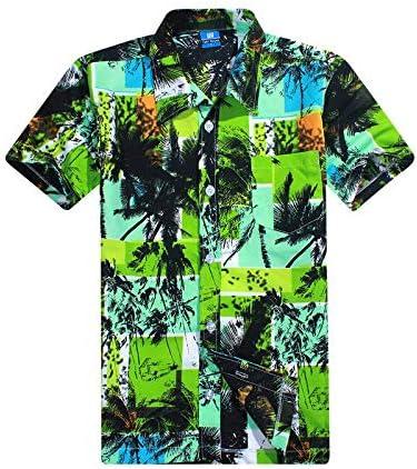 LFNANYI Verano Que Vende la Camisa de la Playa de Hawaii de los Hombres Hawaianos, Hombres Manga Corta Floral Floja Ocasional Camisas de Secado rápido L-4XL XXL tamaño de Asia: Amazon.es: Deportes