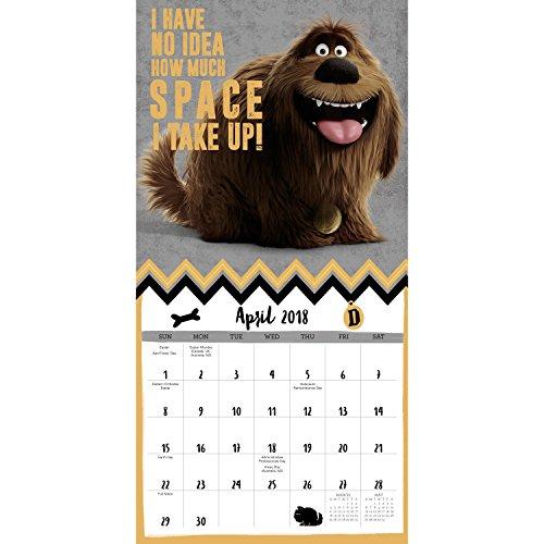 Secret Garden: The Secret Life Of Pets Mini Wall Calendar (2018