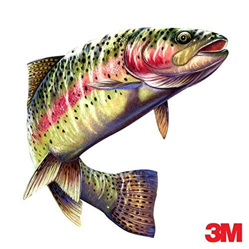 avgrafx 3m Rainbow Trout Fish Fishing Color Decal 6x5.5 Laminated Car Boat Camper RV Truck