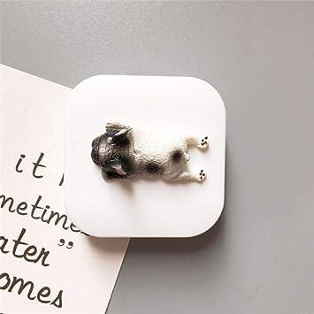 Estuche para lentes de viaje, lindo estuche para lentes de contacto para perros-blanco1: Amazon.es: Salud y cuidado personal