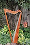 Wood/Carbon Fiber Hybrid Jolie Harp 33 Strings