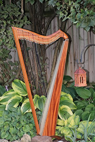 Wood/Carbon Fiber Hybrid Jolie Harp 33 Strings by Musicmakers