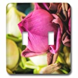 3dRose Danita Delimont - Flowers - Thailand, Chiang Mai, Flowers at the Thai Market Place - Light Switch Covers - double toggle switch (lsp_276974_2)