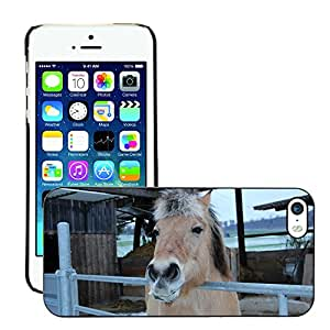 Hot Style Cell Phone PC Hard Case Cover // M00135684 Horse Animal Winter // Apple iPhone 5 5S 5G