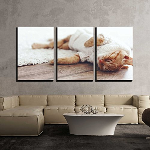 "wall26 - 3 Piece Canvas Wall Art - Cute Little Ginger Kitten Wearing Warm Knitted Sweater is Sleeping on The Floor - Modern Home Art Stretched and Framed Ready to Hang - 24""x36""x3 Panels"