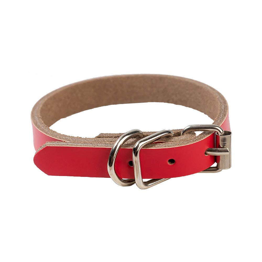 Size XL 2.5 x 61cm Red 5PCS Leather Dog Collar Adjustable Pet Puppy Cat Lead Collar Coffee (Size XL 2.5 x 61cm Red)