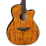 Dean AXS Exotic Cutaway Acoustic-Electric Guitar, Spalt Top