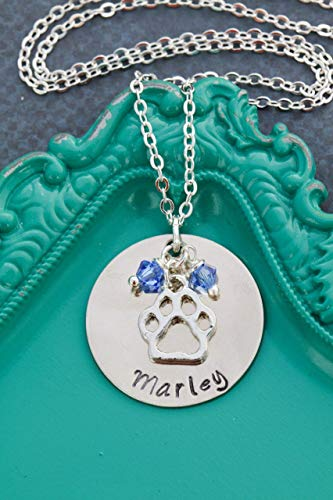 Personalized Paw Print Necklace - DII ABC - Pet Lover Gift - Handstamped Handmade - 1 Inch 25.4MM Silver Disc - Choose Birthstone Color - Custom Name
