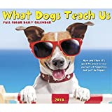 What Dogs Teach Us 2018 Daily Desk Boxed Calendar