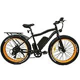 Safecastle Fat Tire Electric Mountain Bike, Electric Fat Tire Bike 500W, 48V, 10.4Ah, 26x4 Wheels