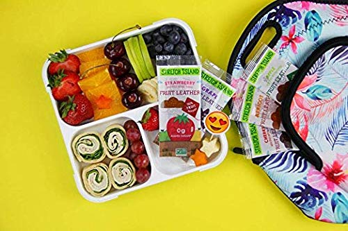 Stretch Island Fruit Leather Snacks Variety Pack, 0.5 Ounce, Pack of 140 (Pack of 140) by Stretch Island (Image #3)