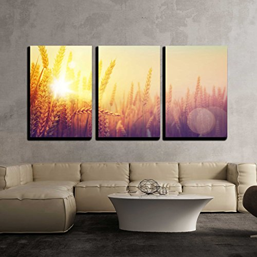 wall26 - 3 Piece Canvas Wall Art - Golden Wheat Field and Sunny Day - Modern Home Decor Stretched and Framed Ready to Hang - 16