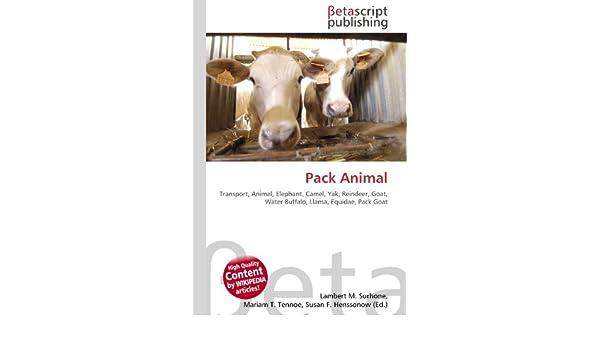 Pack Animal: Transport, Animal, Elephant, Camel, Yak, Reindeer ...