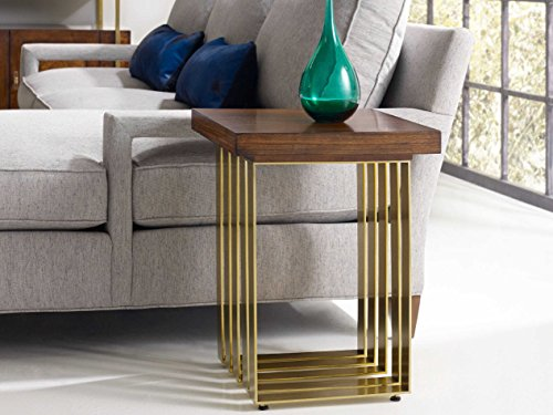 Hooker Furniture Cynthia Rowley Mozambique with Gold Plated 18'' Wide Square Horizon Line End Table (Squares Rowley)